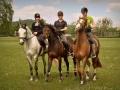 konie_2