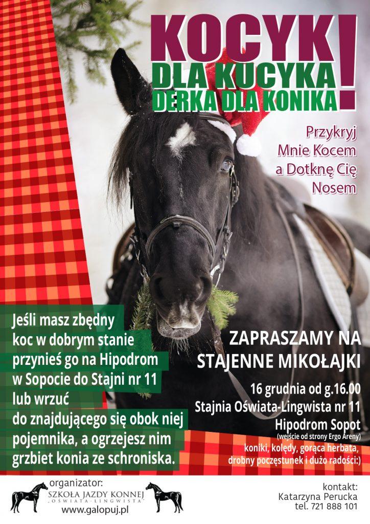 kucyki_koce22
